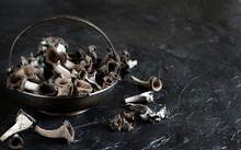 Black Chanterelle Mushroom. Black Trumpet Mushroom.