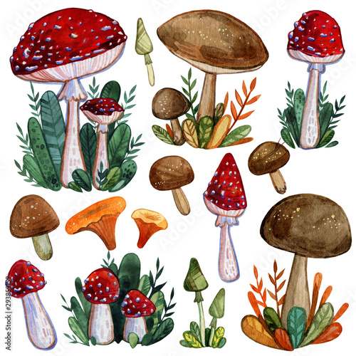 Watercolor set of autumn mushrooms: fly agarics, toadstools, porcini mushrooms, etc Wallpaper Mural