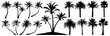 Palm trees silhouette. Coconut tree date palm. Vector set tropical trees