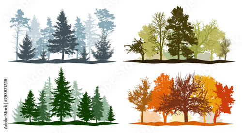 Obraz Four seasons. Set of winter, spring, summer and autumn trees silhouettes. Vector illustration. - fototapety do salonu