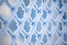 Frozen Fence Made Of Metal Mes...