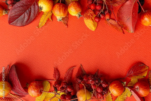 Fond de hotte en verre imprimé Rouge Fall background. Fall leaves frame on a red background