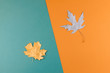 Leinwanddruck Bild - Autumn Fall Background.  Autumn Arrives. Minimal creative flat lay with maple golden leaves on two colored orange and green blue background