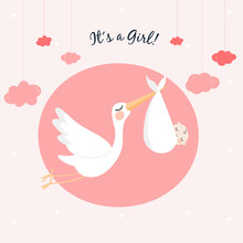 Stork Baby Shower Cards Collection.Vector