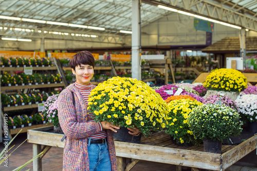 Young Woman holding potted yellow chrysanthemum daisy flowers at garden shopping center Tablou Canvas