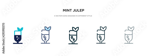 Valokuva  mint julep icon in different style vector illustration