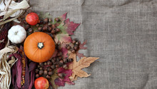 Thanksgiving Pumpkin With Acorns And Dried Corn On Burlap Cloth