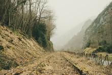 Vías De Tren Abandonadas En El Sur De Francia