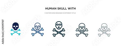 Fototapeta human skull with crossed bones icon in different style vector illustration