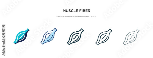 Fototapeta muscle fiber icon in different style vector illustration. two colored and black muscle fiber vector icons designed in filled, outline, line and stroke style can be used for web, mobile, ui obraz