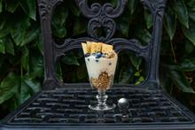 Gourmet Healthy Yogurt With Bl...