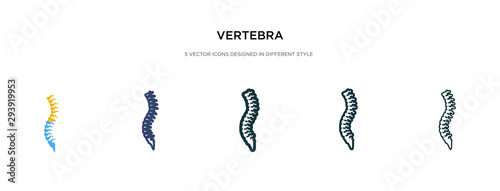 Fotomural  vertebra icon in different style vector illustration