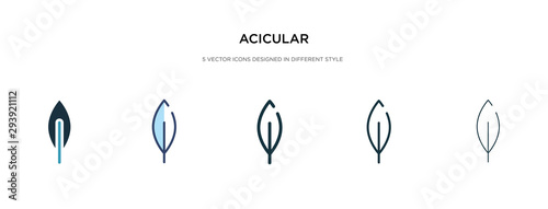 Photo acicular icon in different style vector illustration