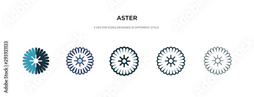 Photo aster icon in different style vector illustration