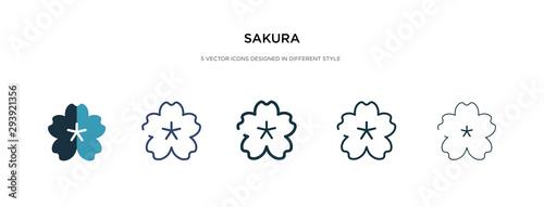 Photo sakura icon in different style vector illustration