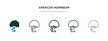 American Hornbeam Tree Icon In...