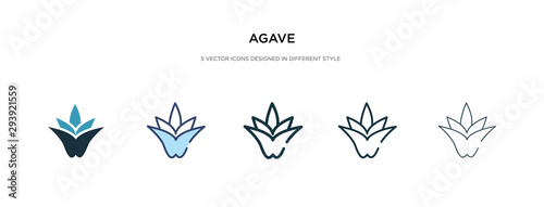 Photo agave icon in different style vector illustration