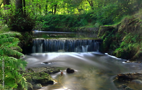 Obraz na plátne A color image of a waterfall on the spillway of Cannop Pond in the Forest of Dean, Gloucester county, England