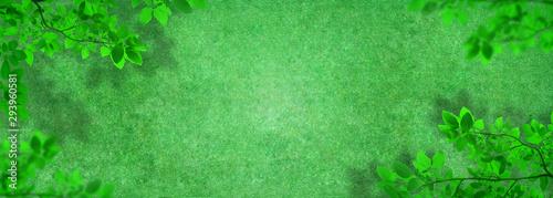 Foto auf Gartenposter Olivgrun Outdoor gardening design : Top view of green artificial grass in outdoor garden with green leaves.