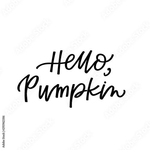 Fotografie, Obraz  Hello pumpkin
