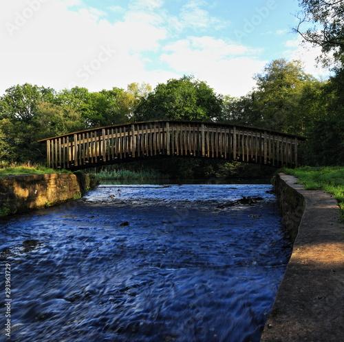Obraz na plátně A color image of a footbridge spanning the spillway of Cannop Pond in the Forest of Dean, Gloucester, England