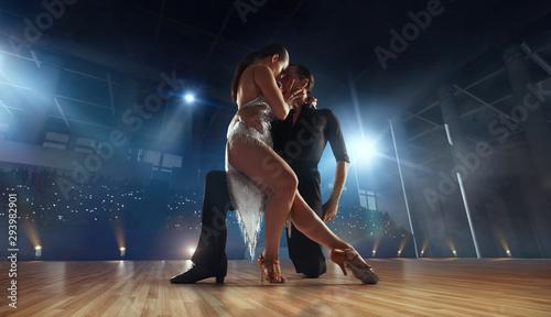 Ballroom dancing. - 293982901