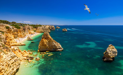 FototapetaPraia da Marinha, beautiful beach Marinha in Algarve, Portugal. Navy Beach (Praia da Marinha) with flying seagulls over the beach, located on the Atlantic coast in Lagoa Municipality, Algarve.