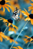 Tropical bright butterfly on an orange flower in a summer magic garden. Summer natural artistic image.