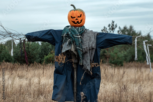 Fotomural A scary scarecrow with a halloween pumpkin head in a field in cloudy weather