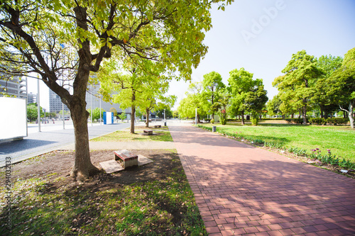 Photo お台場の遊歩道(日本科学未来館前)