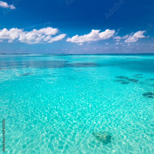 Poster Turquoise Tropical sea under the blue sky. Perfect sky and water of ocean