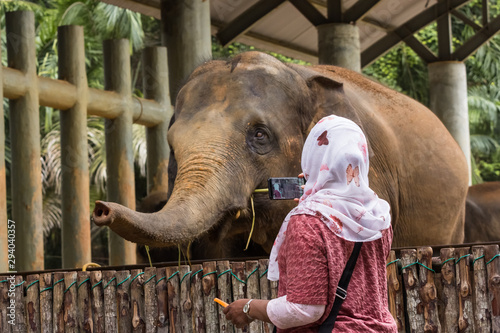 Fototapety, obrazy: tourists and locals at the Zoo malacca, malaysia