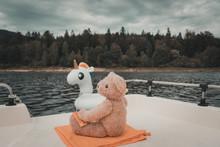 Teddybär Schaut Von Einem Boo...
