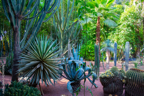 Photo Jardin Majorelle Gardens in Marrakech, Morocco