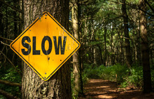 """Slow"" Sign"