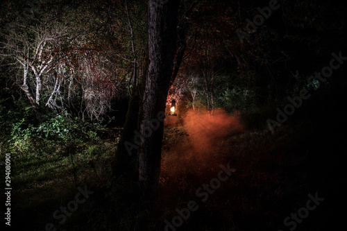 Cadres-photo bureau Noir Horror Halloween concept. Burning old oil lamp in forest at night. Night scenery of a nightmare scene.