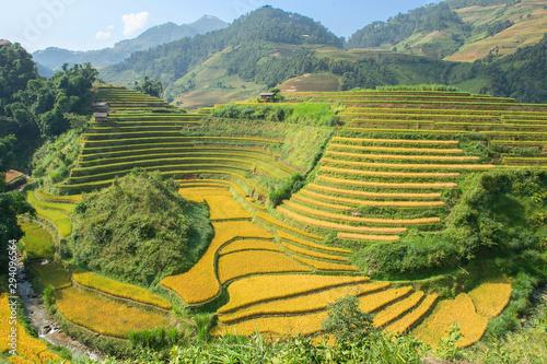 Foto auf Gartenposter Reisfelder Green, brown, yellow and golden rice terrace fields in Mu Cang Chai, Northwest of Vietnam