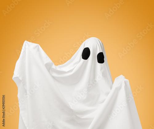 Obraz Cute white ghost on Halloween holiday. - fototapety do salonu