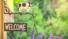 Welcome Sign In Garden