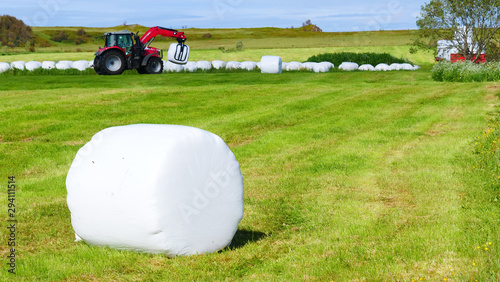 Bale of hay wrapped in plastic foil, Norway Canvas Print