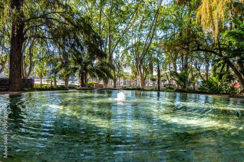 Obraz na płótnie Fountain Oasis the Paseo del Parque in Malaga, Spain with palm tree jungle