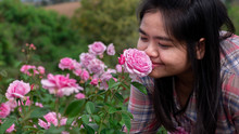 Woman Smelling Rose Flowers In...