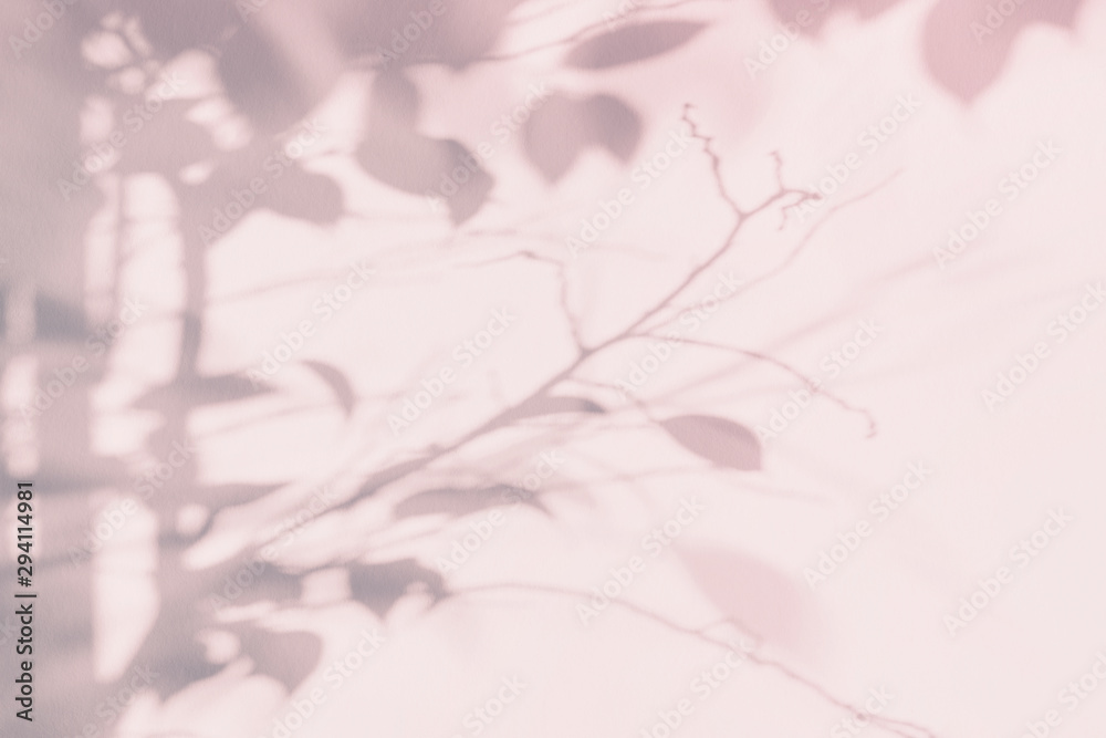 Fototapeta Tree leaf shadow on light wall. Pink purple abstract background