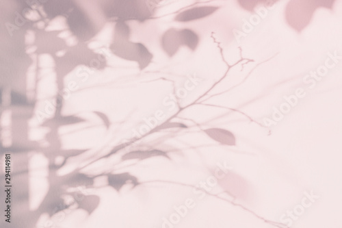Obraz Tree leaf shadow on light wall. Pink purple abstract background - fototapety do salonu