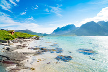 Beautiful Sand Beach On The Lofoten Islands In Norway