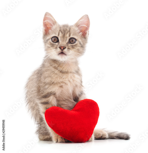 Valokuva  Kitten with toy heart.