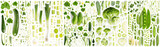 Green Vegetable Collection Abstract