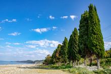 Black Sea Coast With Green Sto...