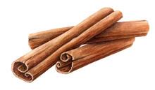 Dried Cinnamon Sticks  Bunchwi...
