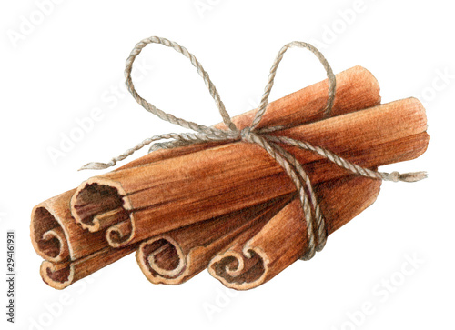 Fototapeta Dried cinnamon sticks  bunch tied with a rope watercolor illustration. Nature raw organic spice from a tree bark. Hand drawn cinnamon pile using in medicine, food and aromatherapy.  obraz